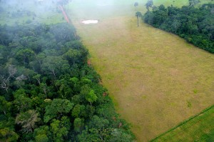 Contrast between forest and agricultural landscapes in Brazil. Credit: CIFOR